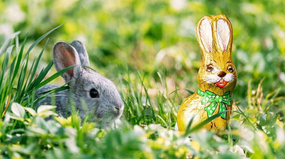 Hiding-Easter-eggs.jpg