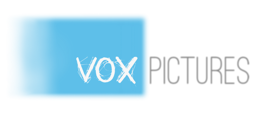vox-logo-adjustable.png