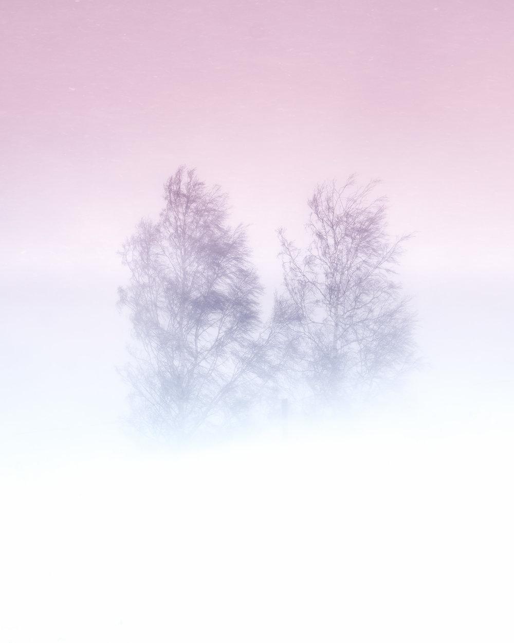 rprum snow blizzard minamilistic 1.jpg
