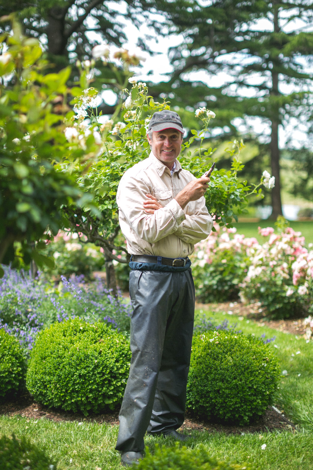 Chris and I got chatting over the roses. There was to be a wedding in the garden later today so he was doing final pruning and tidying up.