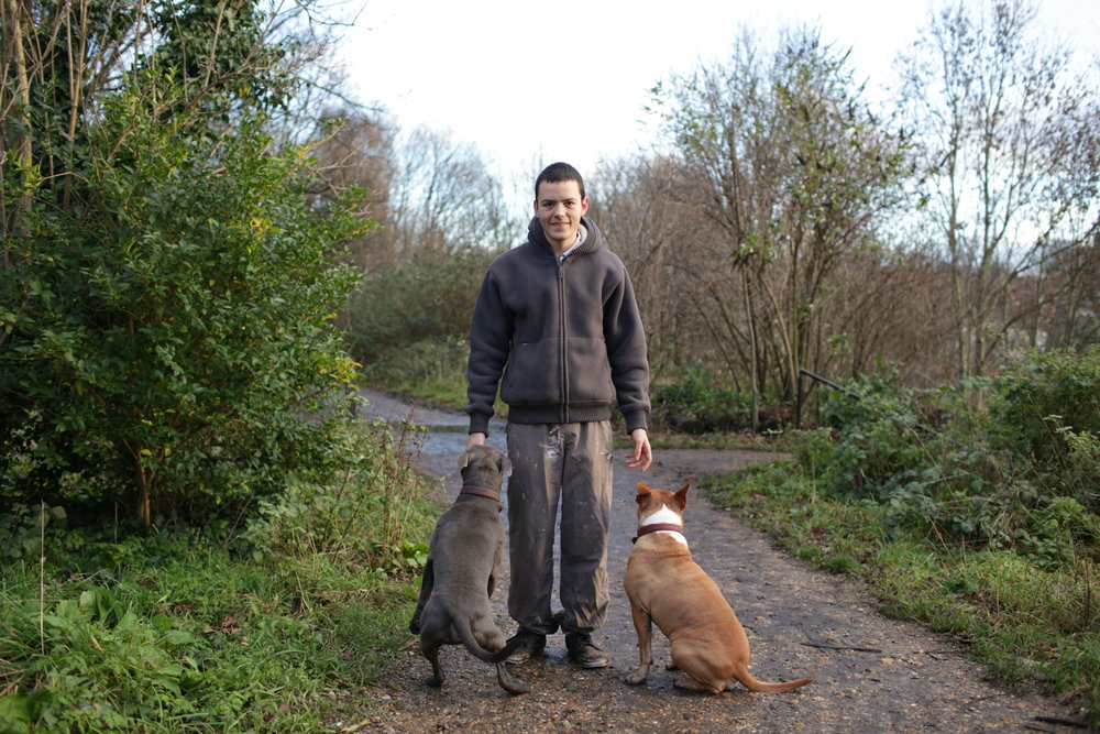 Louie with Manuel and Champ   Louie has 6 dogs, all rescue dogs. These two are so playful that they have to be taken on walks without the others. They were very bouncy and energetic after only having short walks over the Christmas break