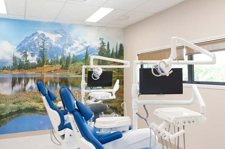 kowhai-dental-west-8704-1000px.jpg