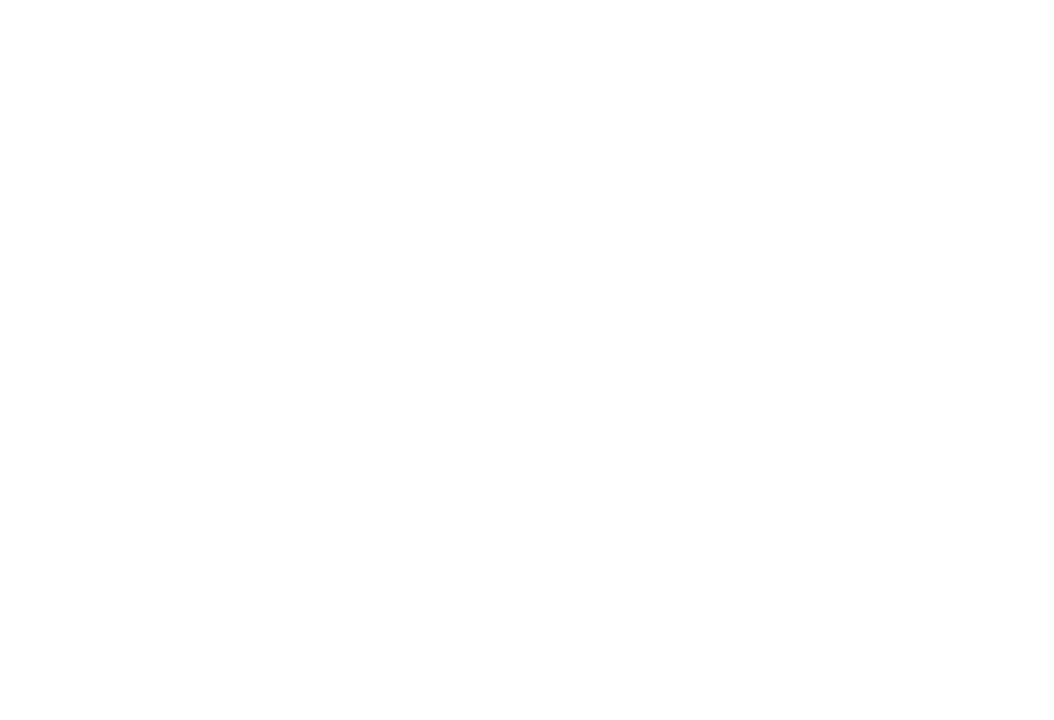BEELNE HEALTHCARE