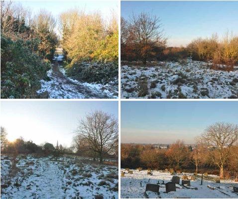 pound lane site photos.jpg