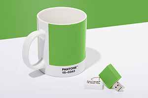 Pantone-Color-of-the-Year-2017-Greenery-Mug-Chip-Drive.jpg