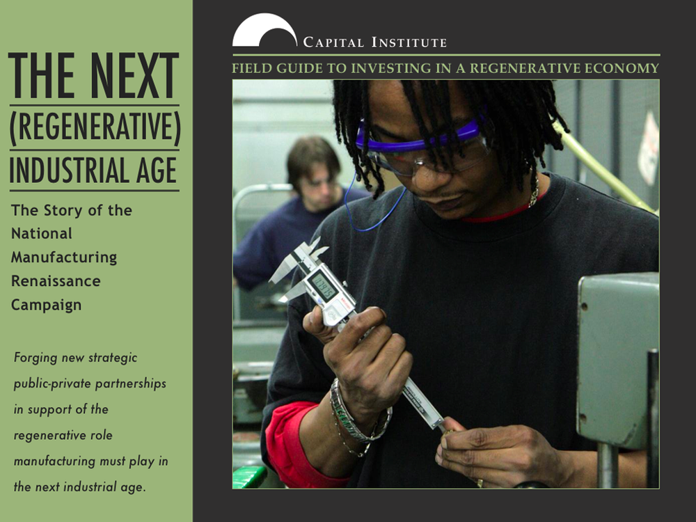 The Next (Regenerative) Industrial Age, an iBook
