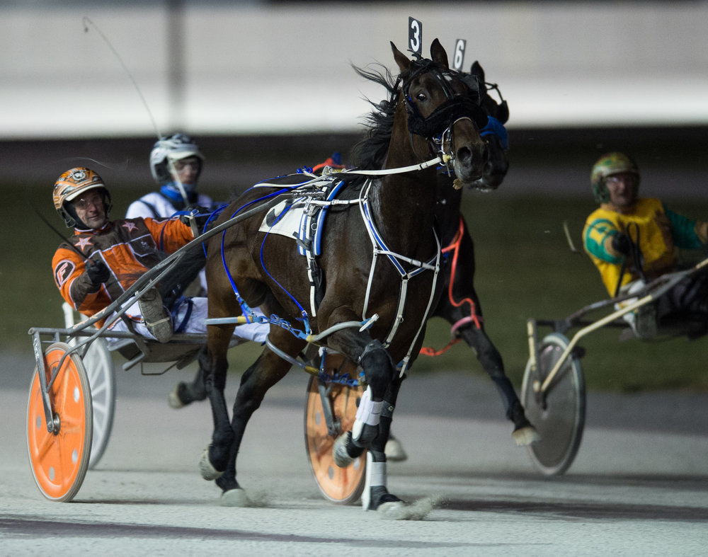 Harness racers compete in the Batavia Downs Harness Race at Batavia Downs, Batavia N.Y. on Nov. 10, 2017.