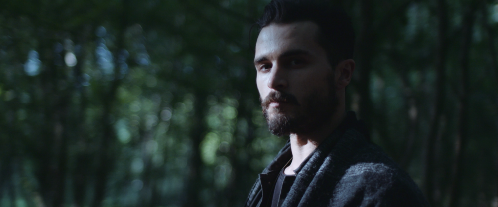 Michael Malarkey - 'Mongrels' Music Videos