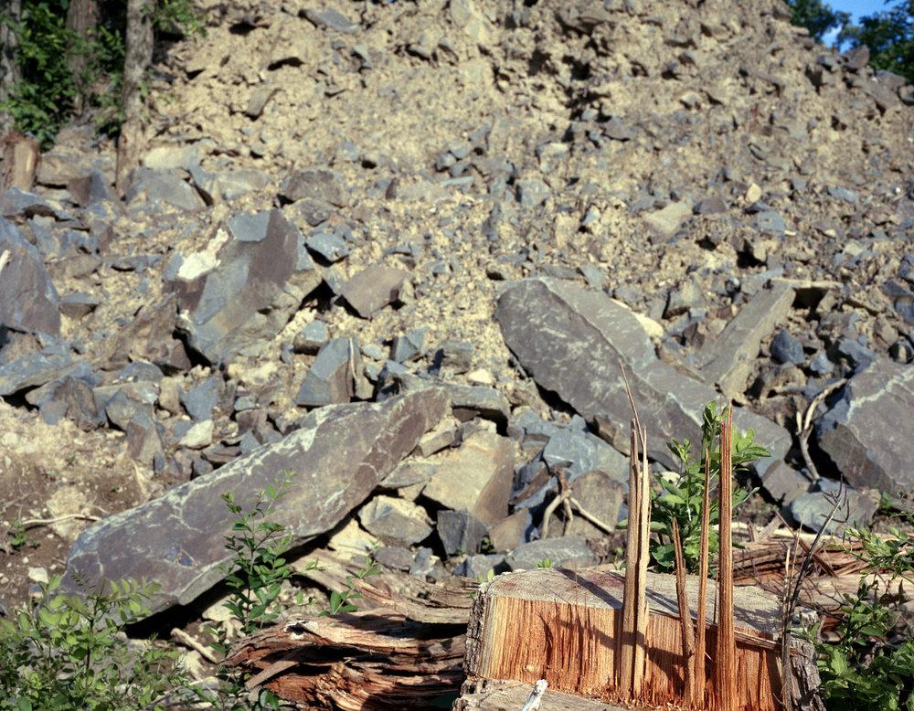 rocks_stump_11x14.jpg