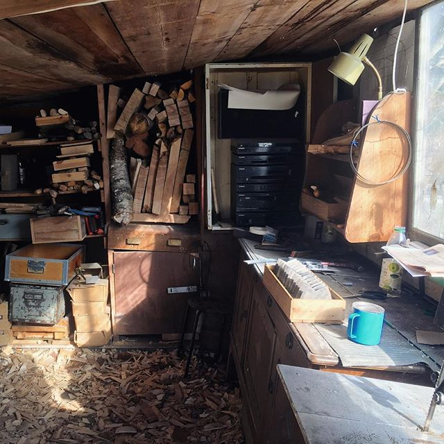 Morning sun in my little shed, and axes getting sharp today!!! 💥💥💥 #greenwoodworking #sloyd #dream