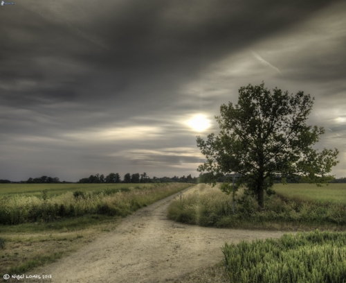 polna-cesta,-razcestie,-strom,-slnko-za-oblakmi-230800.jpg