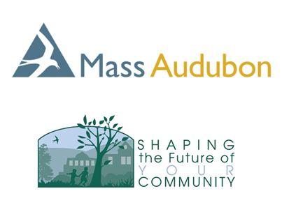MAS_Shaping_Logos.JPG