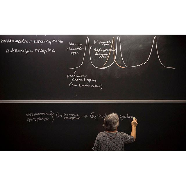 Never stop learning. . . . . #uconnhealth #uconn #chalkboard #chalkboards #highereducation #continuingeducation #neverstoplearning #nursesofinstagram #classroom #lecturehall #canon5d #5dmkiii
