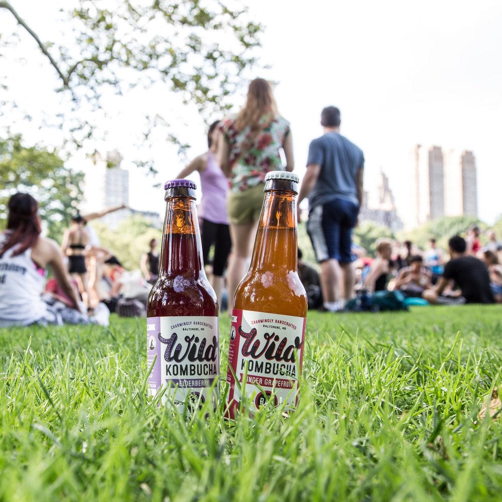 Elderberry and Ginger Bottle in Park.jpg