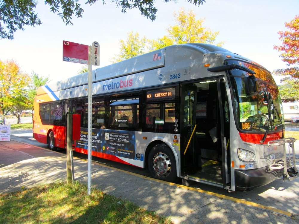 Bus 2 2016.jpg