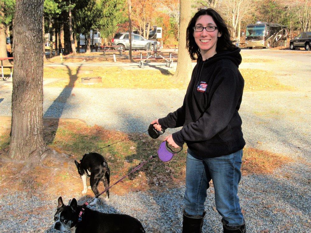 Employee Walks Dogs Around the Campground at Cherry Hill Park