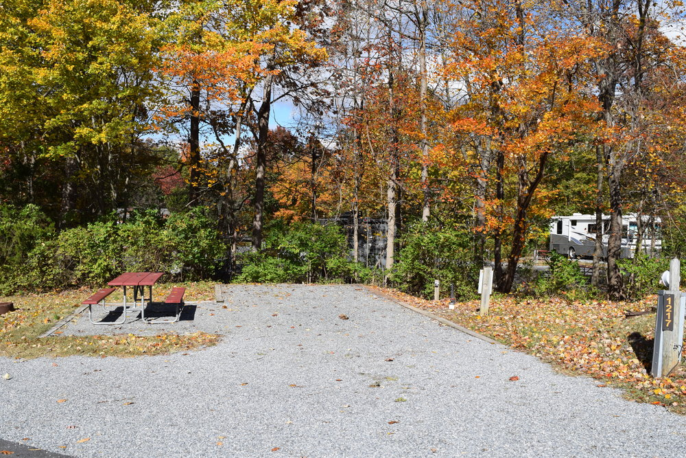 Standard RV Site with Gravel Surface and Picnic Area in Autumn