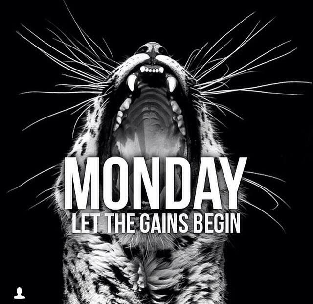 monday-gainz
