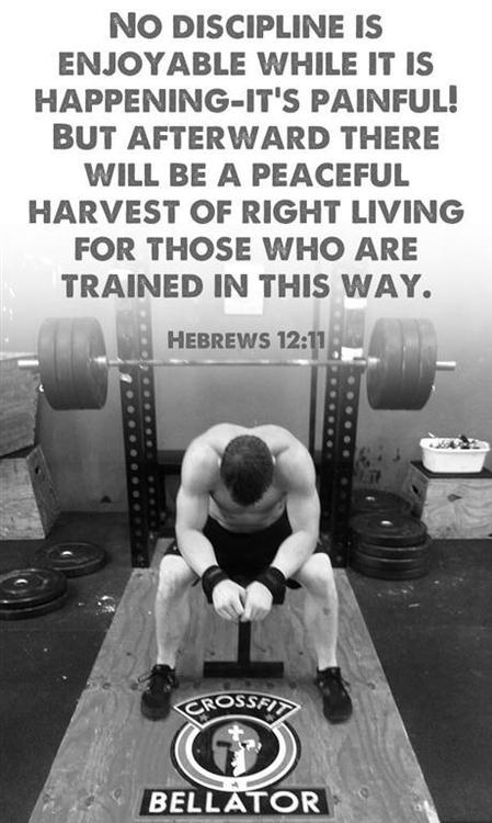Peaceful Harvest