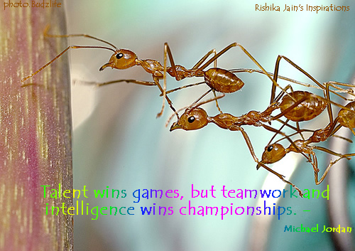 team-work-