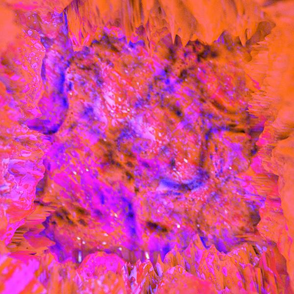 kornelia_csikos_sziakorni_2018_moving_textures (1).png