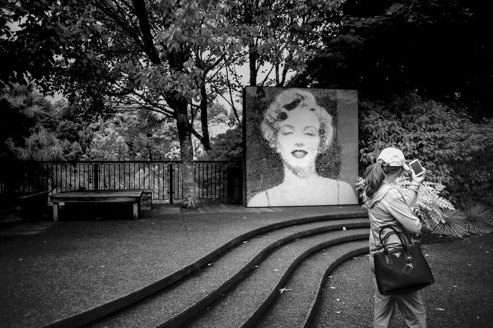 Marilyn Selfie