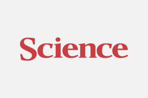 Testosterone And Sex Classification In Elite Sport  |  Science Podcast  |  May 22, 2015