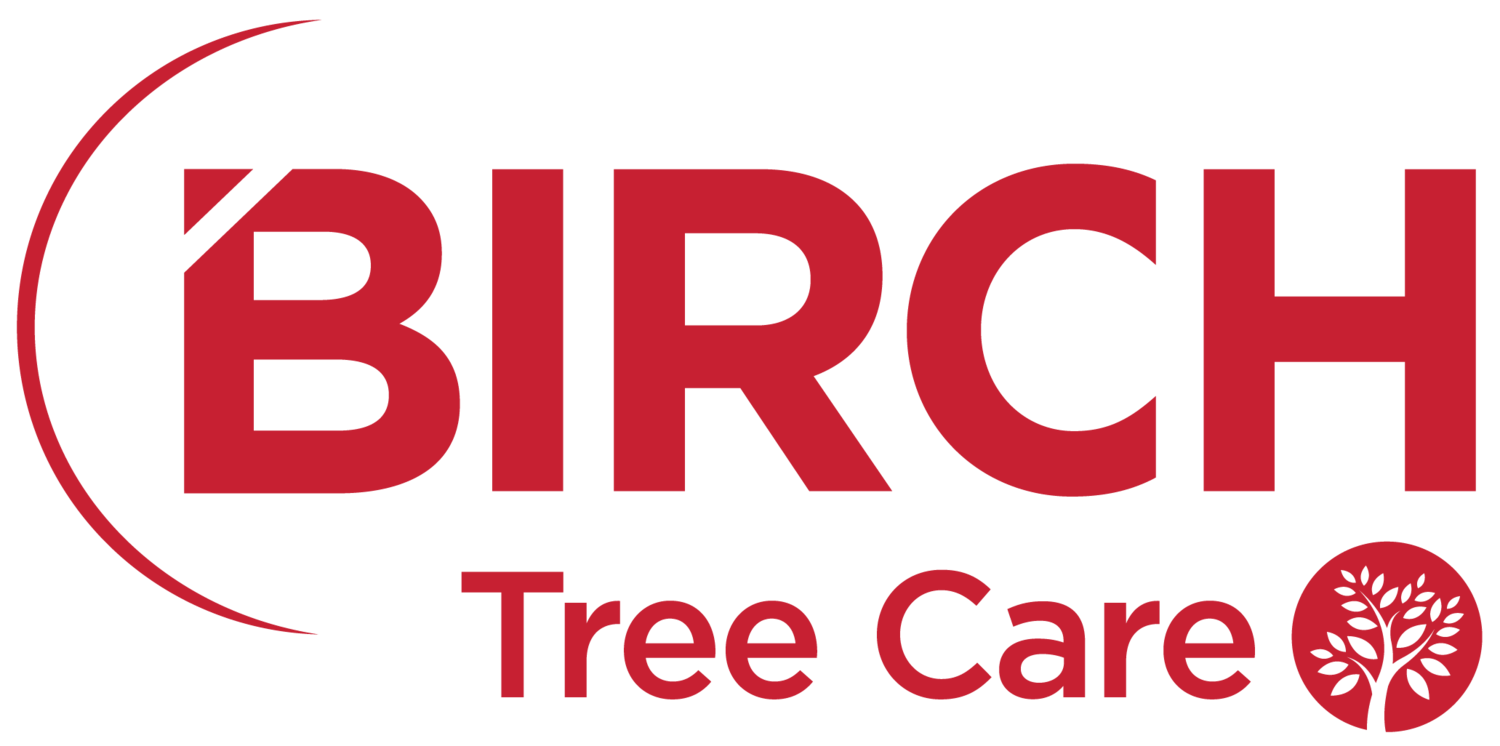 Tree Care Services (Tree Trimming & Tree Removal)