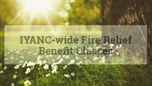 Northern California Fire Relief Benefit Yoga Class At Yoga Center of Chico Sunday, January 27, 2019 11:30 AM  1:30 PM Please join Brian Hogencamp for this class to help those who have suffered loss from the recent fires in Northern California by providing funds to relief organizations. This class is one of many coordinated fire relief benefit classes being held throughout our Association's (IYANC) Northern California region. Students are encouraged to donate directly to any of the following organizations:  Shalom Free Clinic  In addition to monetary donations, Yoga mats, blocks, and belts are needed and can be sent directly to: Shalom Free Clinic, 1010 Mangrove, Chico, CA 95926. (530)342-2445. https://shalomfreeclinic.org/  North Valley Community Foundation240 Main St Suite 260, Chico, CA 95928. (530) 891-1150 https://www.nvcf.org/funds/email: info@nvcf.org  Aaron Rodgers Norcal Fire Recovery Fund240 Main St Suite 260, Chico, CA 95928. (530) 891-1150 https://www.nvcf.org/aaronrodgersfund/ email: info@nvcf.org  Brian Hogencamp is a dedicated yoga practitioner and senior certified Iyengar Yoga teacher. He travels annually to India for extended study with the Iyengar family. Brian is devoted to sharing the art, science, and philosophy of yoga according to the teachings of B.K.S. Iyengar. www.iybrian.com