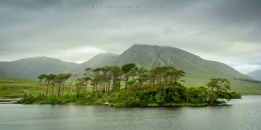 Pine Island Connemara, County Galway  Image Details: F11, ISO 100, 1/2 second.