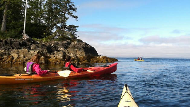 Kayak-Eco-Tour-image-2 (1).jpg