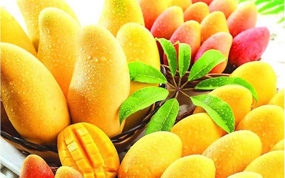 mango6.jpg