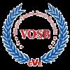 VOSB-Transparent-logo-300x300.png