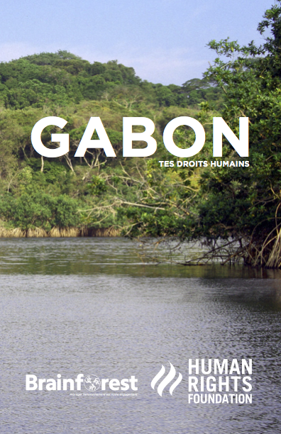 Download the Gabon guide in English or  French .  Read  more  about Gabon.
