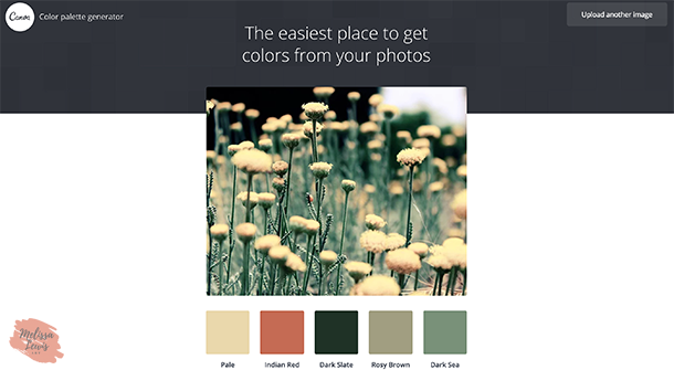 Best-Online-Free-Color-Palette-Generators-for-Creatives-by-Melissa-Lewis---Canva.png