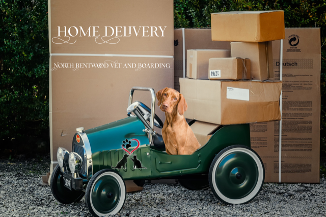 Home Delivery - Now introducing our ONLINE Pharmacy and Nutrition Store.