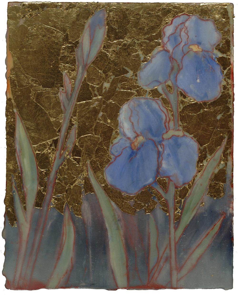 Garden #2 (Iris)
