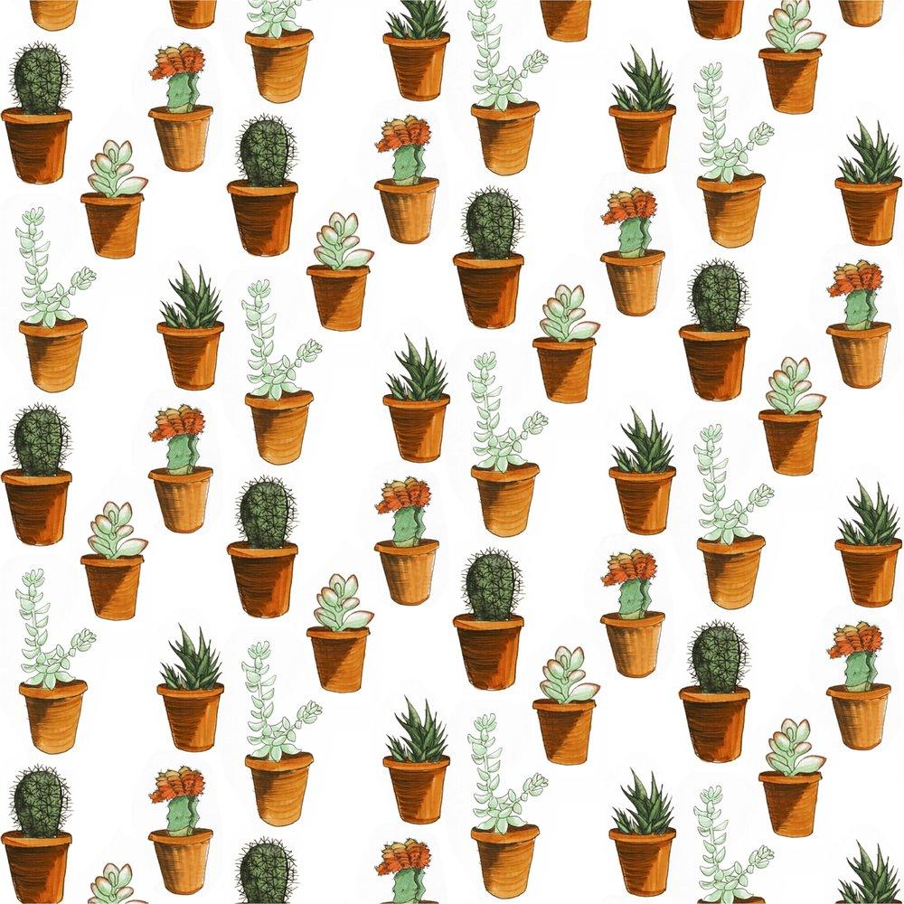 succulent pattern.jpg