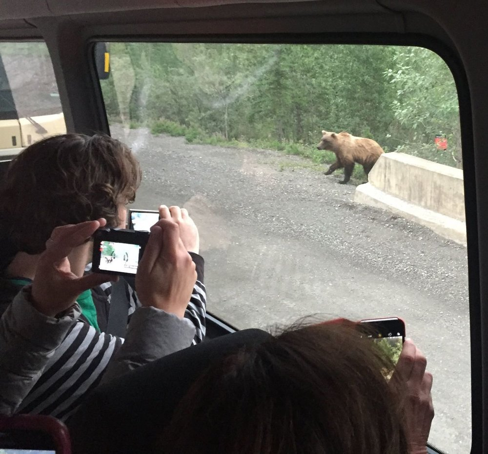 2017 participants scramble to take pictures of one of our neighbors in the park.