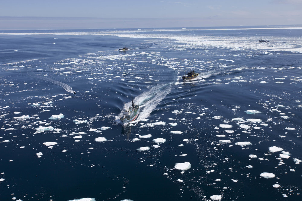 110101_Japanese_whaling_fleet_on_the_run_from_Sea_Shepherd_(BV8024).jpg
