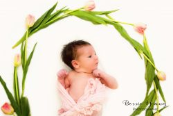 Sonora Spring Newborn Portraits by Bessie Young Photography