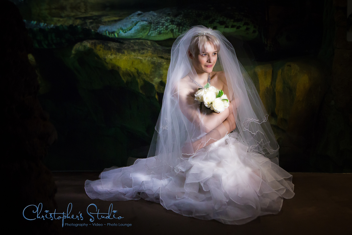 Bridal Portraits at the Bronx Zoo