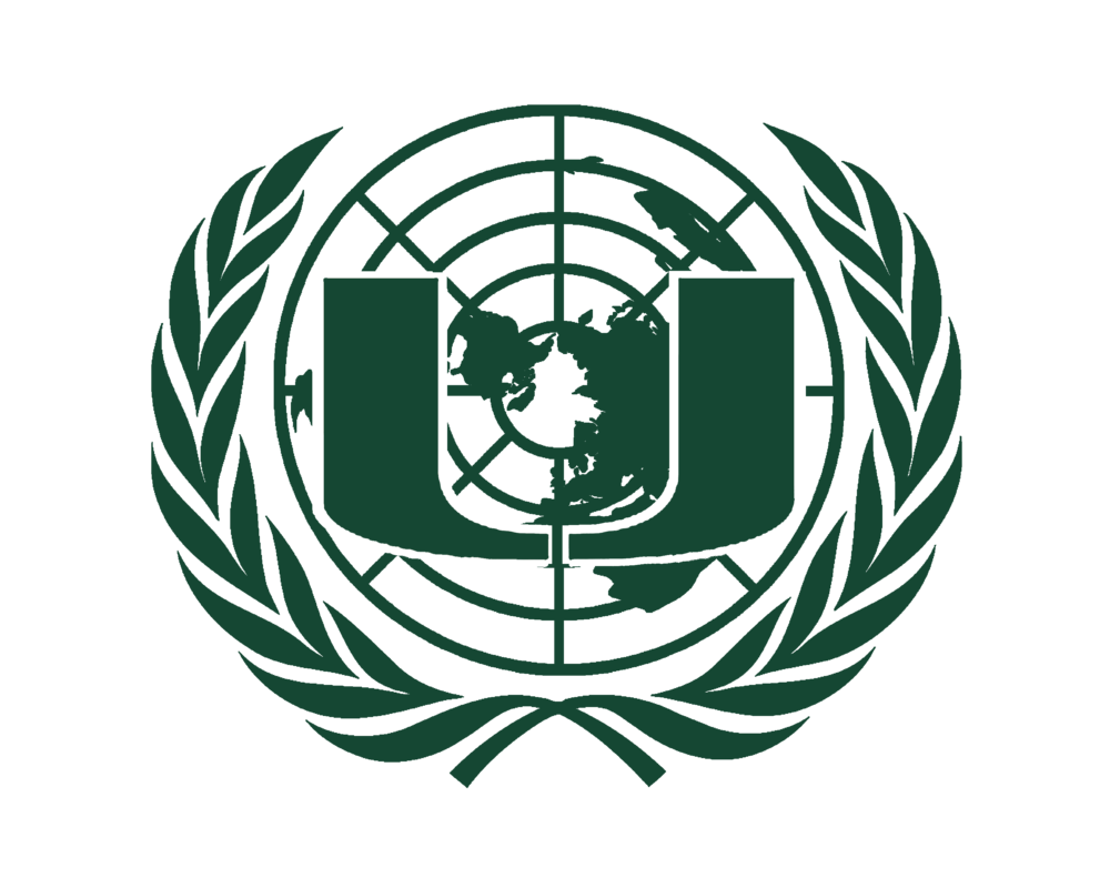 Specialized agencies 305 model united nations biocorpaavc