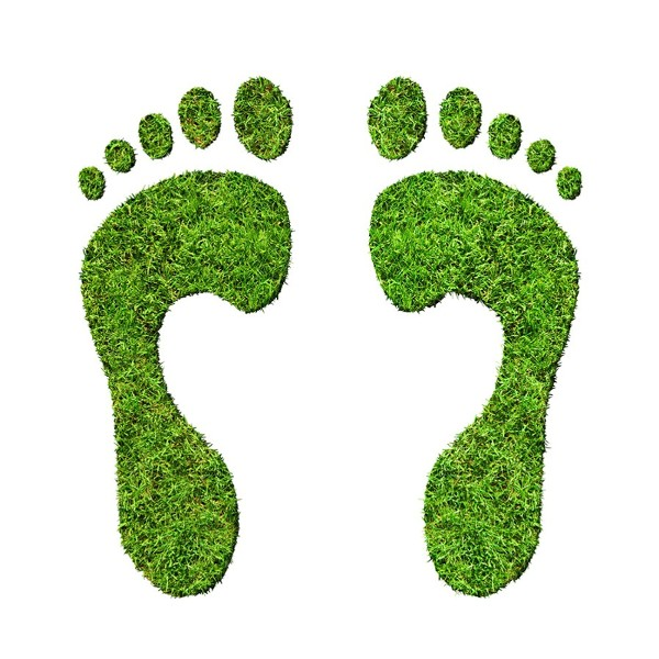 eco_footprints.jpg