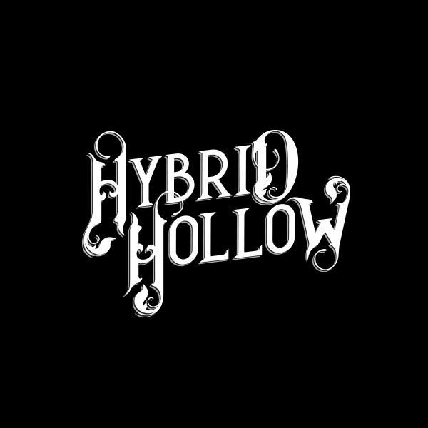 desnoir-logo-hybridhollow2.png