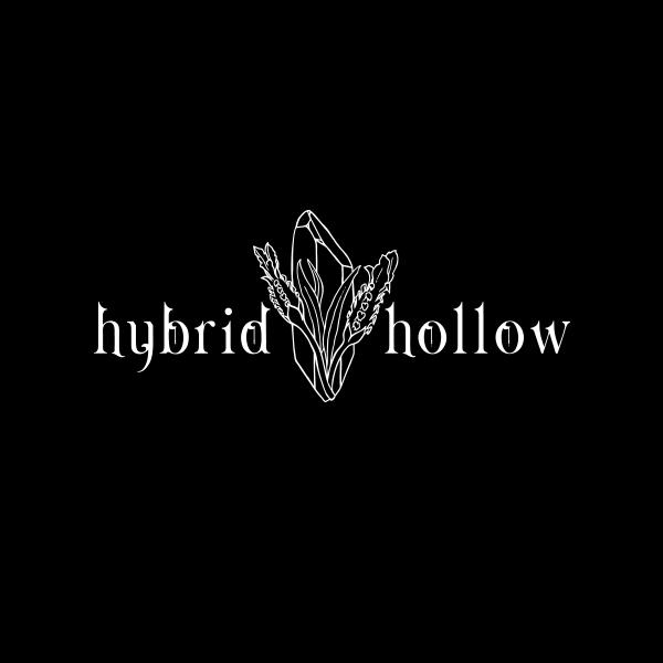 desnoir-logo-hybridhollow.png