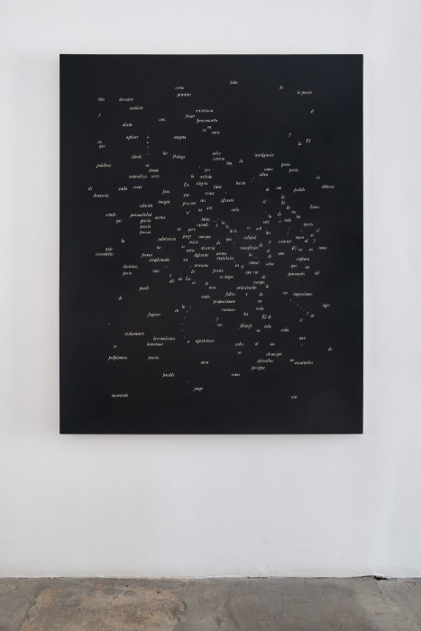 Jorge Mendez Blake, Dismantling Gorostiza (Notes on Poetry. Prologue) / Desmantelando a Gorostiza (Notas sobre poesia. Prologo), 2017, Acrylic on linen, 60 x 47.9 inches