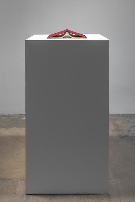 Jorge Mendez Blake, Vita contemplativa / Vita activa (Como la lluvia), 2015
