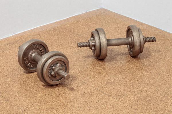 Fiona Banner, Dumb Bells, 2012, bronze and wooden box