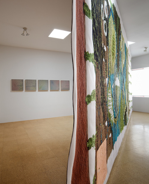 Pae White, Installation view, 2011